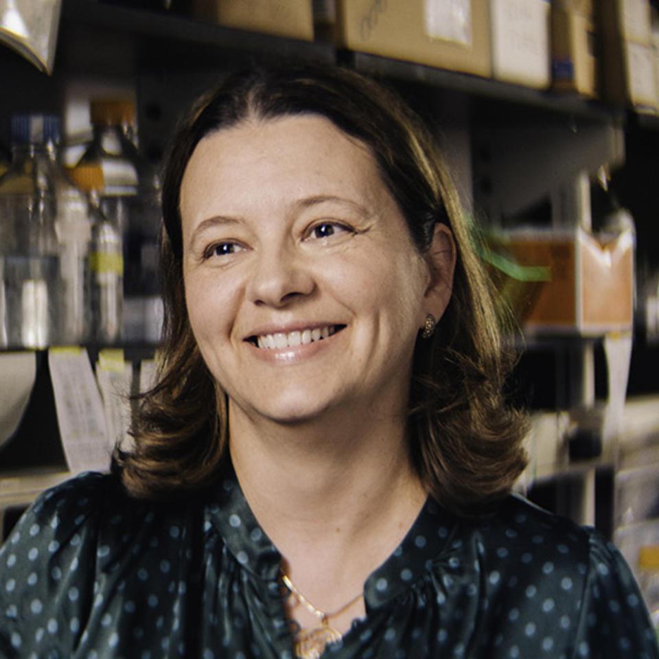 Yulia Nefedova, M.D., Ph.D.
