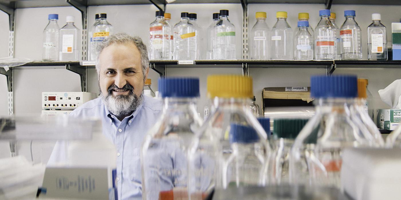 Dmitry Gabrilovich, M.D., Ph.D.